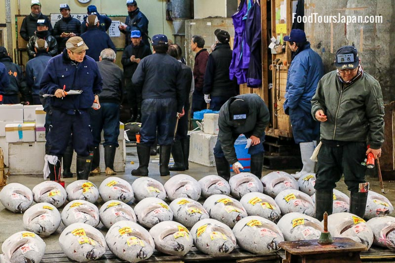 Tsukiji Fish Market Tuna Auction Tour