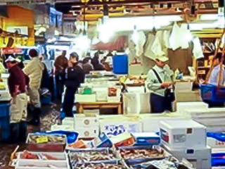 Tsukiji Market Explore Fun Tour