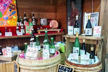 Hiroshima Sake Tasting Brewery Food Pairing Tour at Saijo