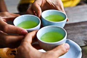 Japanese Green Tea Virtual Tour